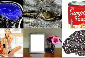 neuro.deals